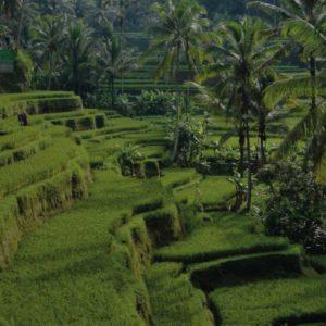 Aventure Bali Lombok